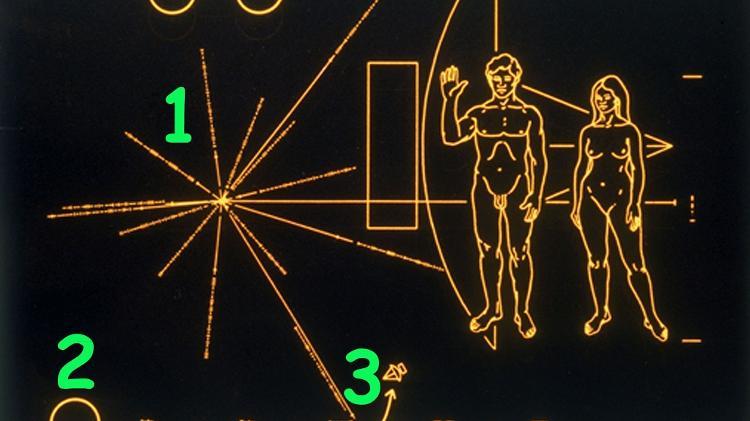 Cada linha que irradia do centro indica a direção e a distância do pulsar em relação ao Sol - Getty Images - Getty Images
