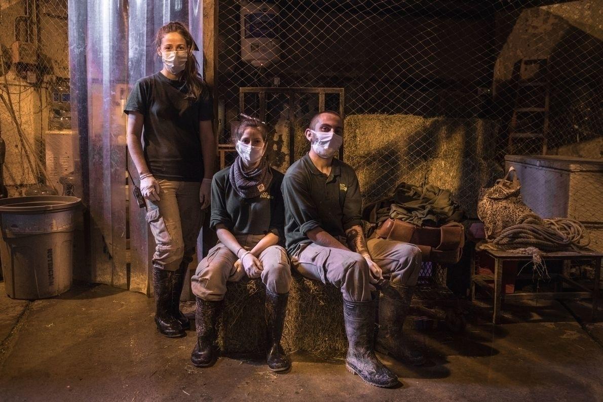 No recinto interno do Templo do Elefante Hindu, no Ecoparque, os cuidadores Paula Lemos e Marcos Flores, e a veterinária Natalia Ruiz González - Sofía López Mañán / Divulgação
